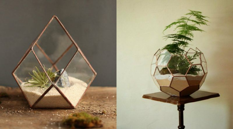 Terrarios geométricos diseñados por Nightshade Studio