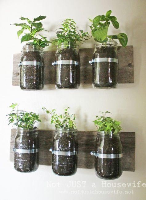 reutilizar tarros de cristal con plantas