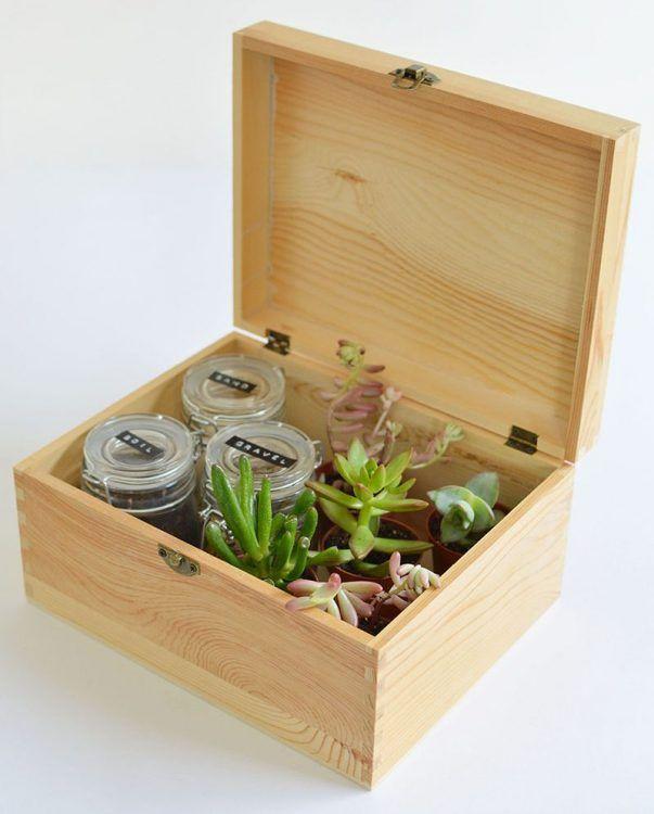 decoración con plantas de interior - caja de madera