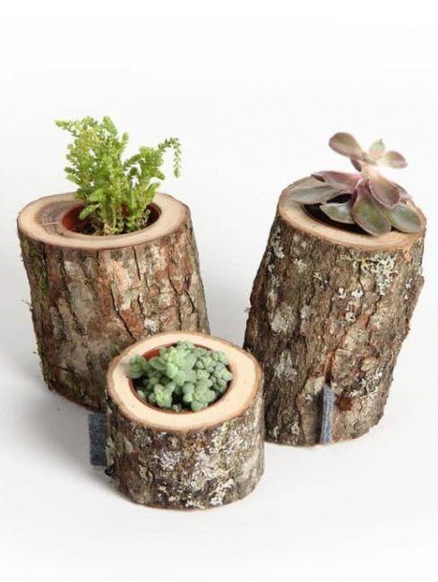 Pequeñas macetas hechas con troncos de madera
