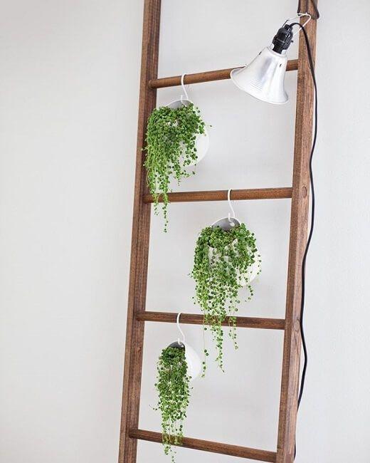 Escaleras de madera recicladas para decoraci n la for Escalera madera decoracion