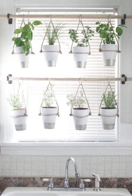 Decoración con plantas para una ventana