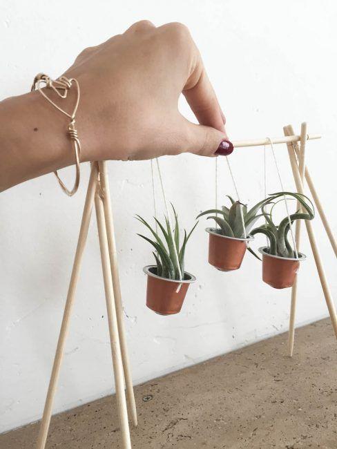 Manualidades con cápsulas de café y plantas
