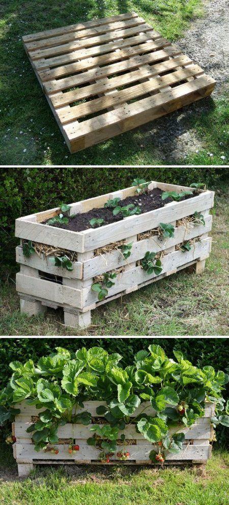 Jardineras con palets cortados