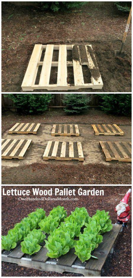 Jardineras en el suelo con palets