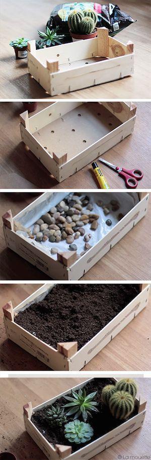 Macetero original con una caja de frutas