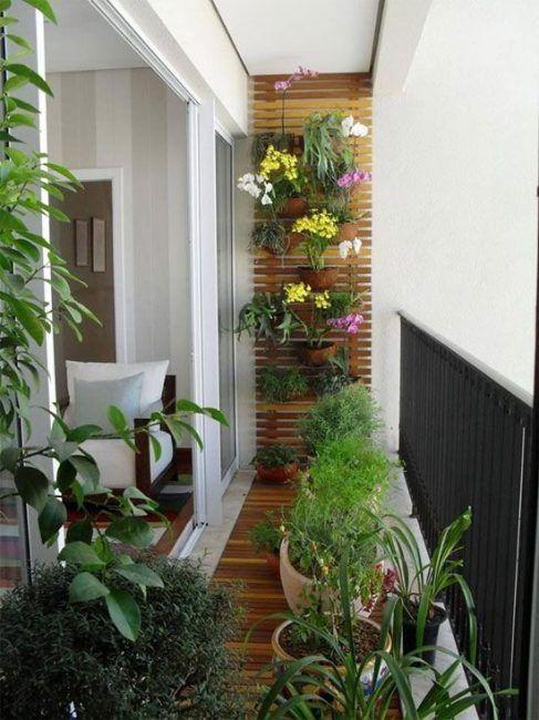 Pared de terraza llena de plantas
