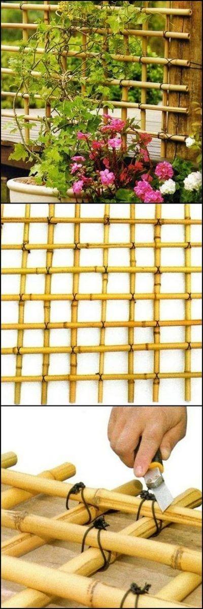 Bambú natural para planta trepadora