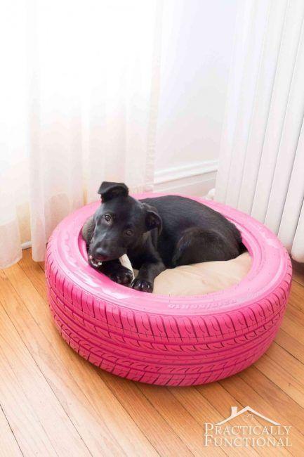 Cama para perro con neumático