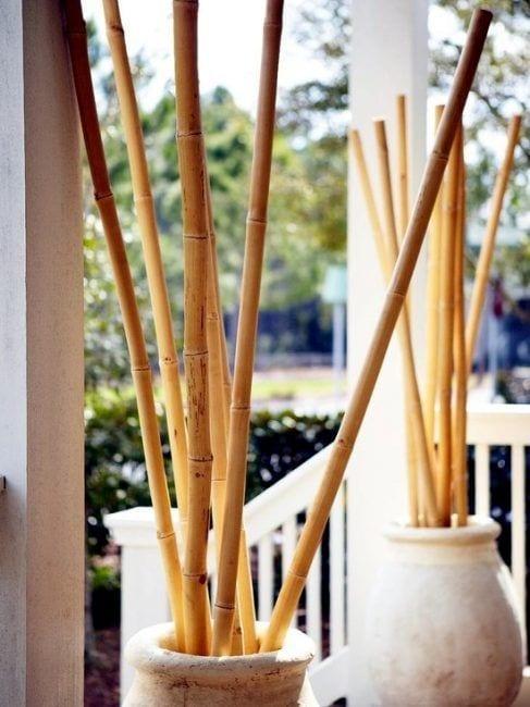 Jarrones con cañas de bambú