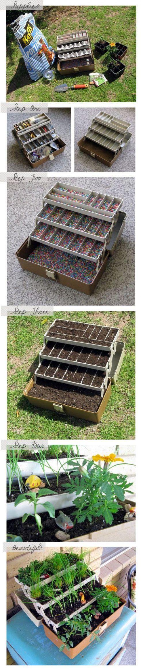 Caja de herramientas con plantas