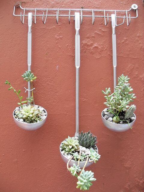 Plantas colgantes en cucharones