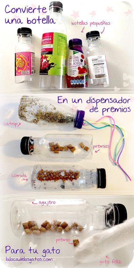 Dispensador de comida para gatos con una botella de plástico