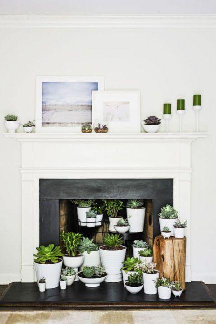 Decoración de chimeneas con plantas