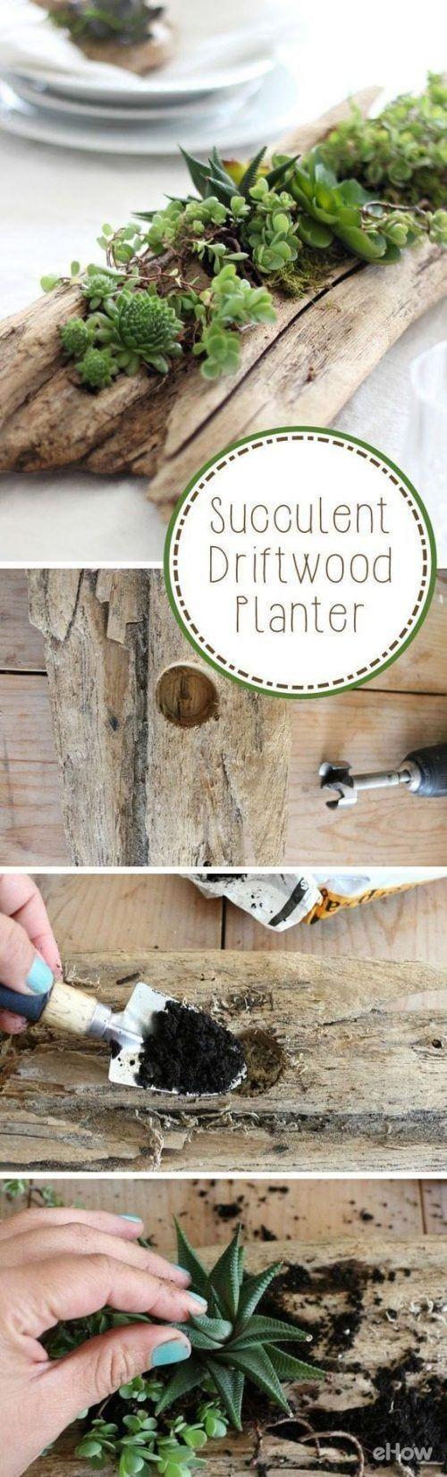 Transformar tronco de madera en macetero para plantas