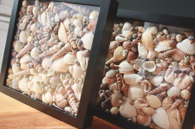Marco de fotos relleno de conchas y caracolas
