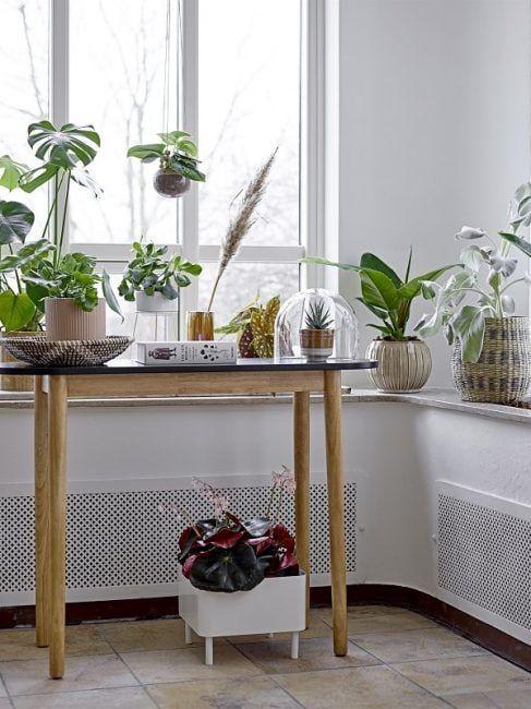 Consola y plantas para decorar un recibidor