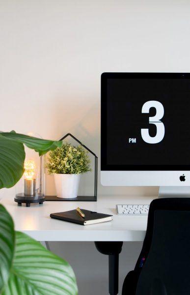 Decorar tu despacho con plantas