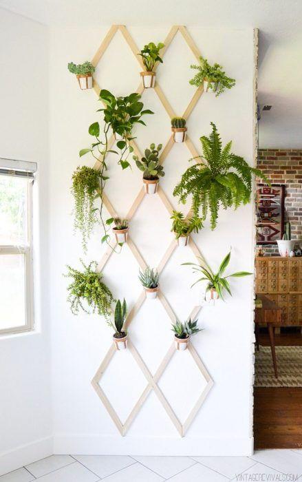 Malla de madera con plantas